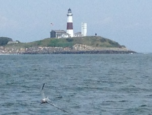 Finally arriving at Montauk Point! Almost to our destination.