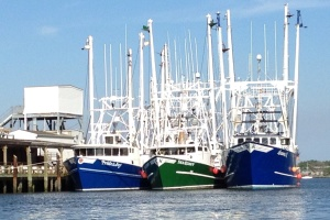 Commercial fishing is big in Cape May