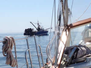 We find good company with the commercial fishing vessels on our way to Martha's Vineyard.