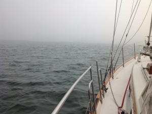 The view from our boat, Day 3 in Montauk