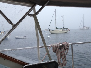 Not leaving the Isle of Shoals today! A raw, rainy day in the harbor.