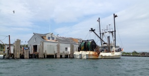 Commercial Fishing is prevalent in the area