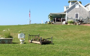 This is the lawn leading up to the main building on the Fishing Camp. Check out the planters. Really? A toilet? That's Cuttyhunk . . . just a little different kind of place.