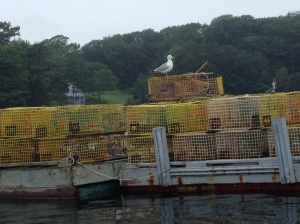 Classic Maine - a seagull atop lobster pots.