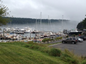Foggy day in Northeast Harbor