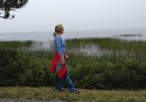 A little fog didn't deter us from walking through Acadia