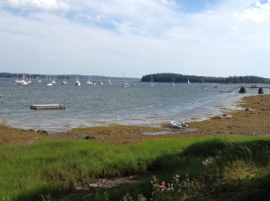A look out at Gilkey Harbor