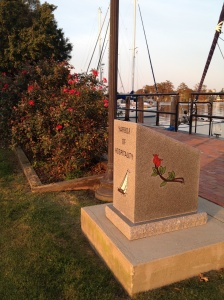 "Here is a monument telling the story of the ""Rose Buddies"" beside the transplanted bed of roses."