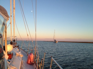 We anchored at Awendaw Creek and met up with Magnolia. This was a halfway point to Charleston.