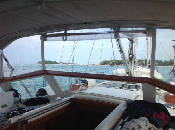 Land ho! Bimini in sight!