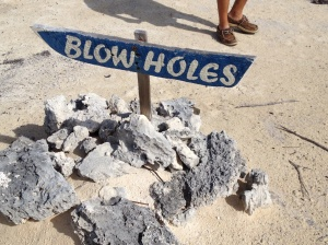 We saw the sign and followed it. I don't think that meant WE were the blow holes . . .