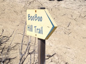 On the trail to Boo Boo Hill
