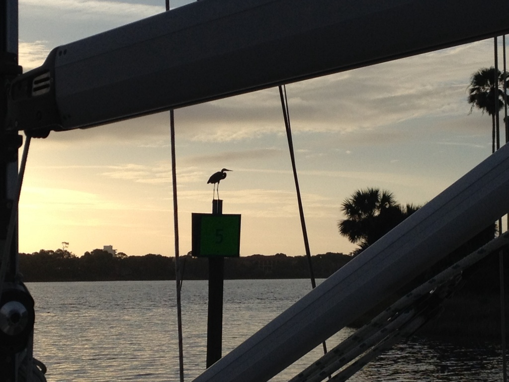 And we have another feathered observer supervising our departure from the Halifax River Yacht Club in Daytona Beach - a really wonderful facility with the best staff.