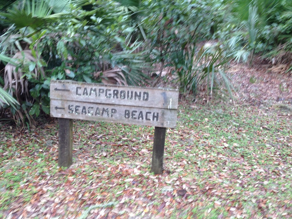 Following the marked paths on Cumberland Island.