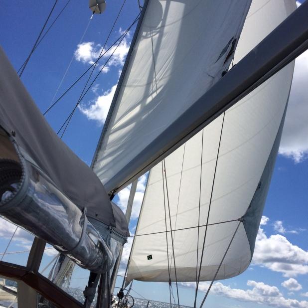 We had a BEAUTIFUL sail to Nantucket - no motor, just wind. Ahhh . . .