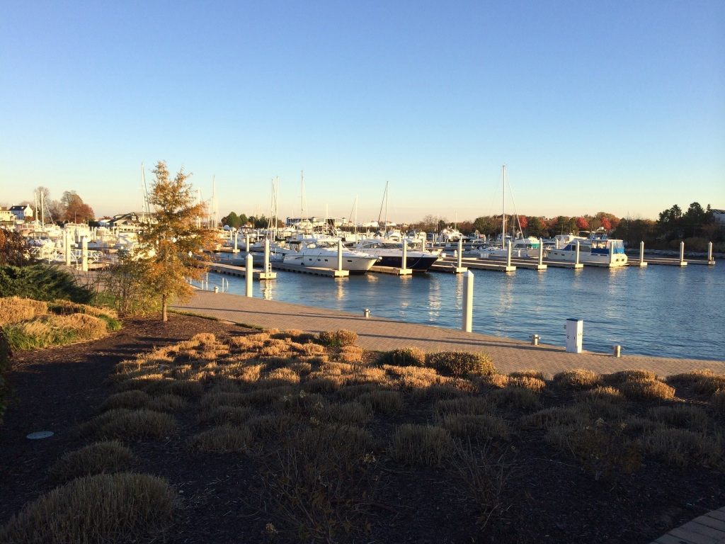 Eleanor Q's winter marina on the opposite side of the Bay Bridge from Annapolis.