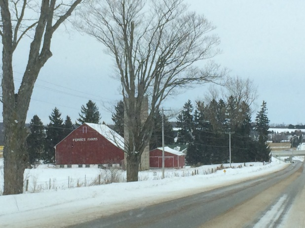 More farmland on the back roads from Barrie.