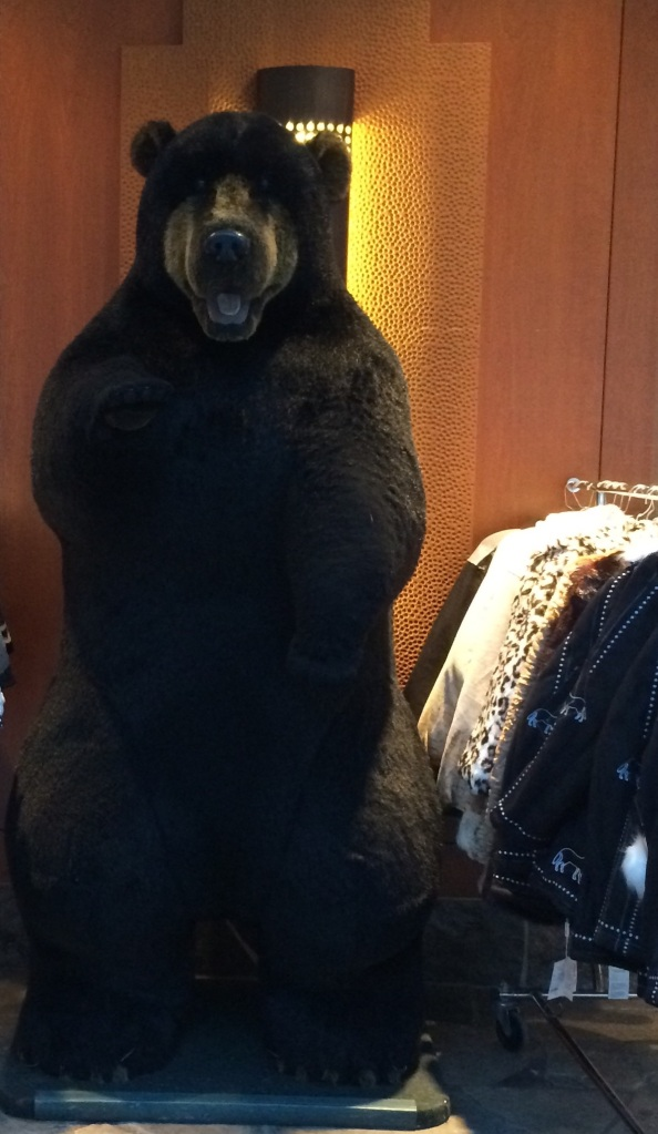 You gotta love a big stuffed bear! This one lives outside one of the shops in the hotel.
