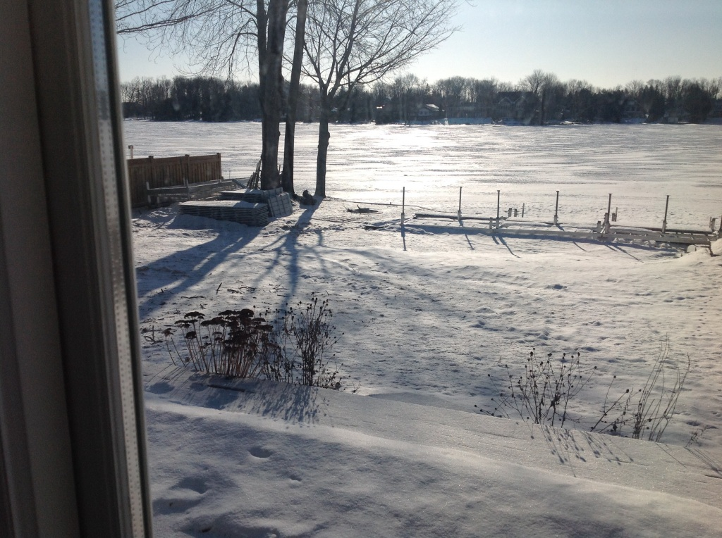 The view out the back door. That is a lake under the ice.